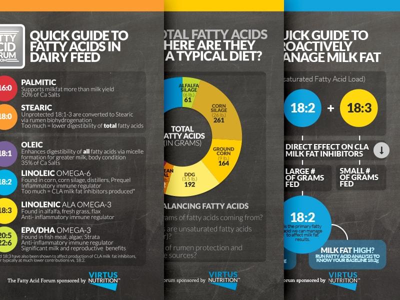 Fatty Acids 101